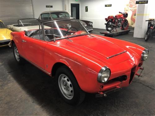 Used 1965 Alfa Romeo Giulia Spider 1600